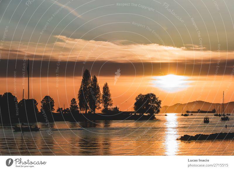 Ferien & Urlaub & Reisen Natur Sommer Baum Meer Blume Erholung Blatt Strand Berge u. Gebirge Umwelt Blüte Küste Wasserfahrzeug Sand Park