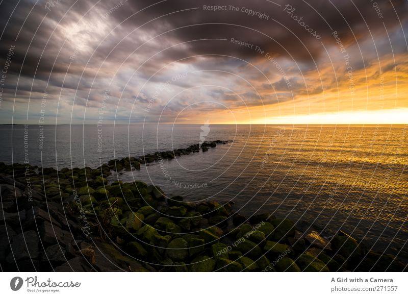 Hiddensee l I just want to hold you in my arms Himmel Natur Sonne Sommer Meer Strand Wolken Ferne Landschaft Frühling Küste Horizont Wetter Wellen