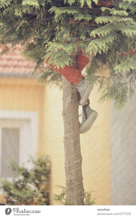 schwupps ... Mensch Baum Freude Fenster Gebäude Beine Fuß Kindheit Fassade Beton