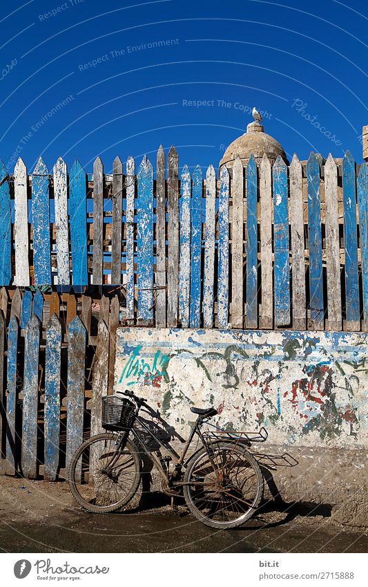 Altes Fahrrad, im Hafen von Essaouira in Marokko, Afrika. Ferien & Urlaub & Reisen Tourismus Ausflug Abenteuer Ferne Freiheit Sommer stehen Armut chaotisch