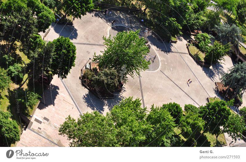 göttlicher Platz Mensch Schönes Wetter Baum Sträucher Park Köln Stadt Beton Erholung gehen grün ruhig leer Erholungsgebiet Spaziergang Mitte Spazierweg Schatten