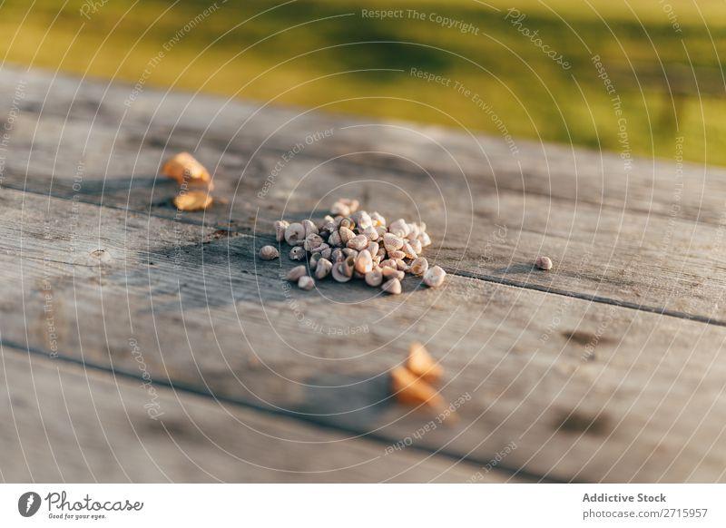 Kleine Muscheln auf Holztisch Muschelschale klein Natur Tisch marin natürlich Objektfotografie Tier schön Detailaufnahme Nahaufnahme Weichtier aquatisch