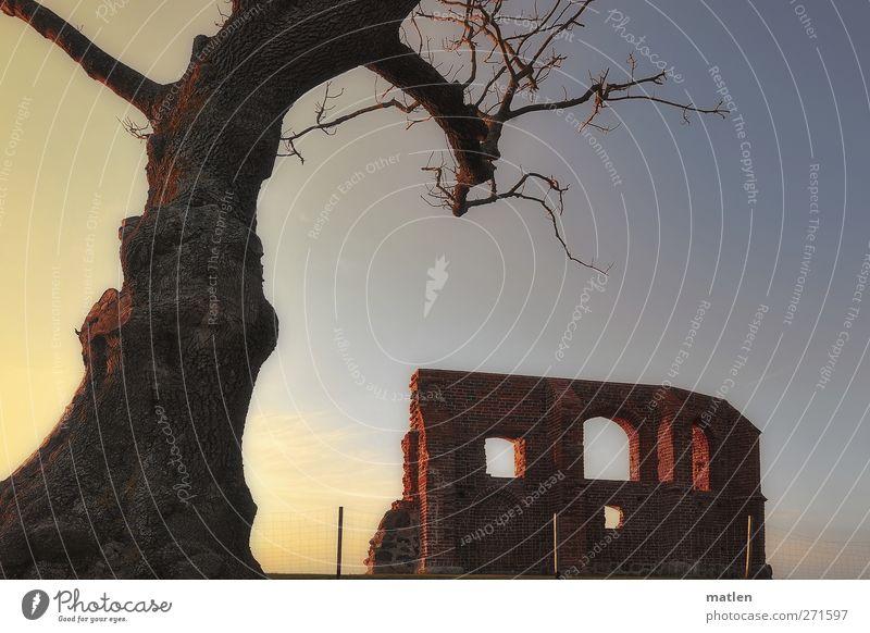 relicts Himmel Baum Landschaft Fenster Frühling Küste Kirche Hoffnung Schönes Wetter Glaube Gleichgewicht Ruine Wolkenloser Himmel demütig