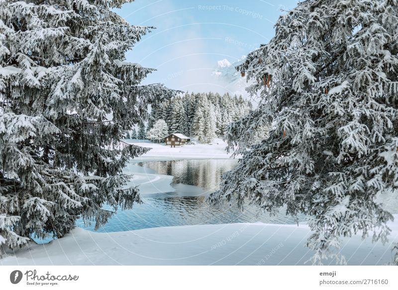 Arnisee I Umwelt Natur Landschaft Winter Schönes Wetter Schnee Baum Berge u. Gebirge See außergewöhnlich natürlich blau weiß Tourismus ruhig Gebirgssee Schweiz