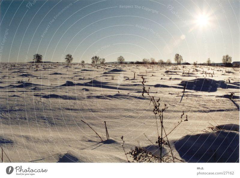 winterwüste Sonne Winter kalt Schnee hell Feld Wüste