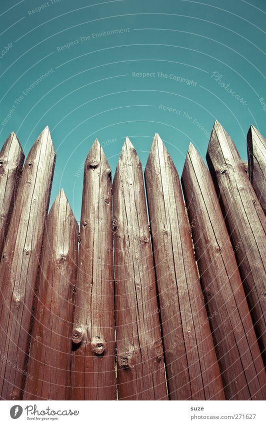 Offensive Abwehr Himmel blau Umwelt Holz braun hoch Spitze bedrohlich Schutz Zaun lang Wolkenloser Himmel Barriere Grenze Holzbrett Aggression