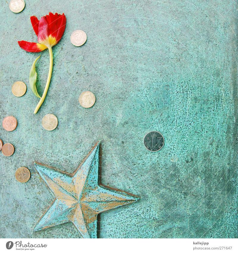für kein geld der welt Denkmal rot Stern (Symbol) Blume Trauer Geld Spende Russland Kommunismus Weltkrieg Opfer Russisch Krieg Soldatenfriedhof Farbfoto
