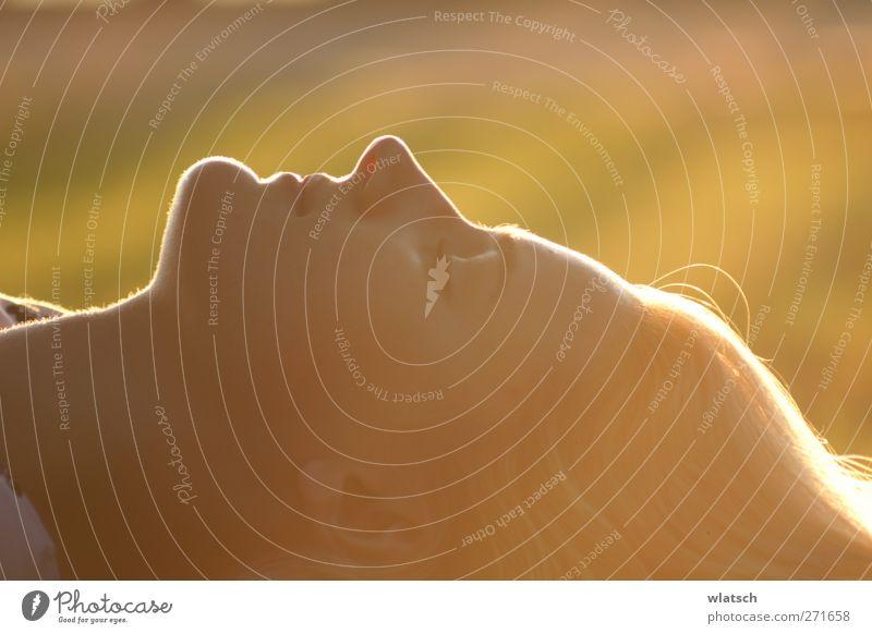 Orange Silhouette Lifestyle Reichtum schön Gesicht Schminke Medikament Wellness harmonisch Wohlgefühl Zufriedenheit Erholung Massage feminin Junge Frau