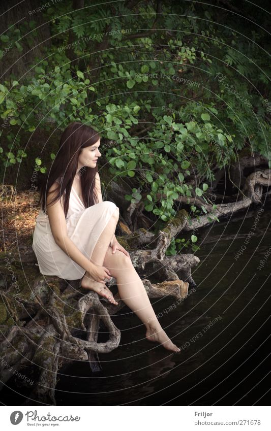 Waldgenuss Mensch Jugendliche Erwachsene feminin Junge Frau sitzen 18-30 Jahre Kleid brünett langhaarig