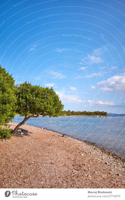 Strand an der Nordküste Mallorcas, Spanien. Lifestyle Erholung ruhig Ferien & Urlaub & Reisen Tourismus Ausflug Abenteuer Ferne Freiheit Sommerurlaub Meer Insel