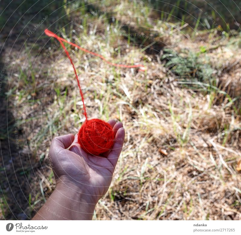 runder roter Wollball Hand Natur Wald drehen werfen hell Hilfsbereitschaft Farbe Hoffnung Problemlösung Faser Handfläche Halt Top Wolle Erde Boden ziehen links