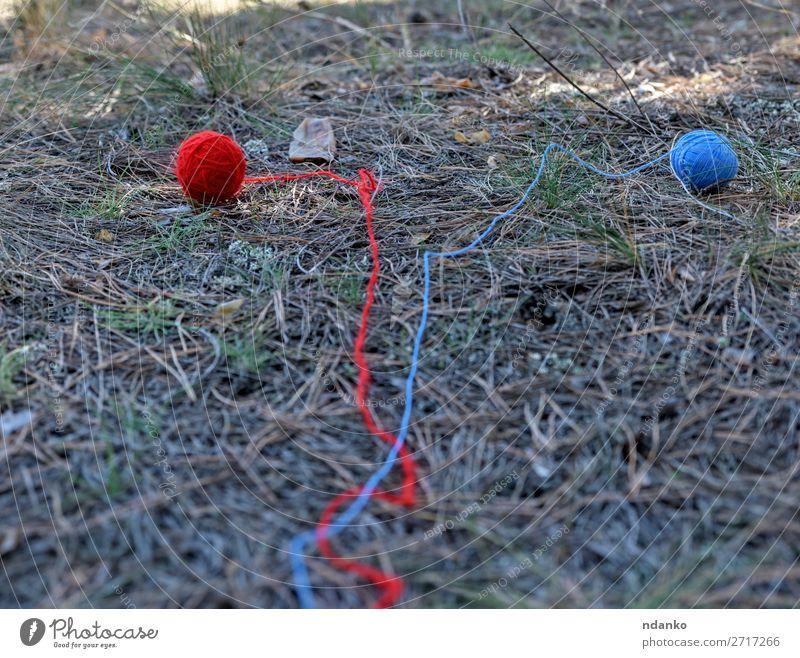 zwei kleine Wollkugeln, die in der Mitte des Waldes abgewickelt wurden. Sommer Natur Gras Wege & Pfade Bewegung laufen blau grün rot Abenteuer Idee Überleben