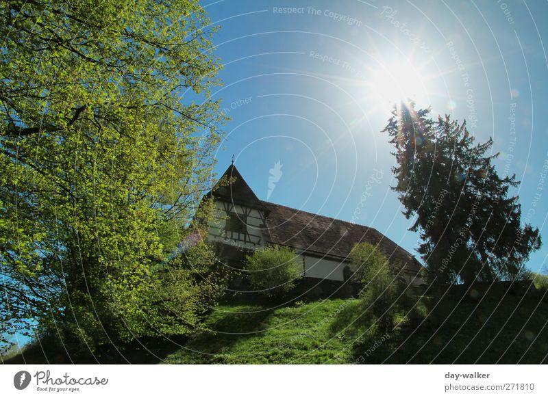 Summertime blau grün Baum Landschaft Wiese Gras Frühling Gebäude Kirche Schönes Wetter Hügel Wolkenloser Himmel