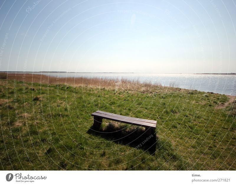 Hiddensee | es gibt immer einen Platz für dich Umwelt Natur Landschaft Himmel Horizont Gras Wiese Küste Sitzgelegenheit Bank Stimmung Zufriedenheit Vertrauen