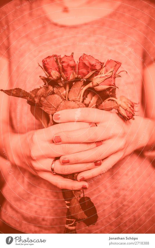 junge Frau schenkt rote Rosen zum Valentinstag Hand Blume Freude Liebe Gefühle rosa Freundschaft Geschenk festhalten Verabredung schenken Frühlingsgefühle