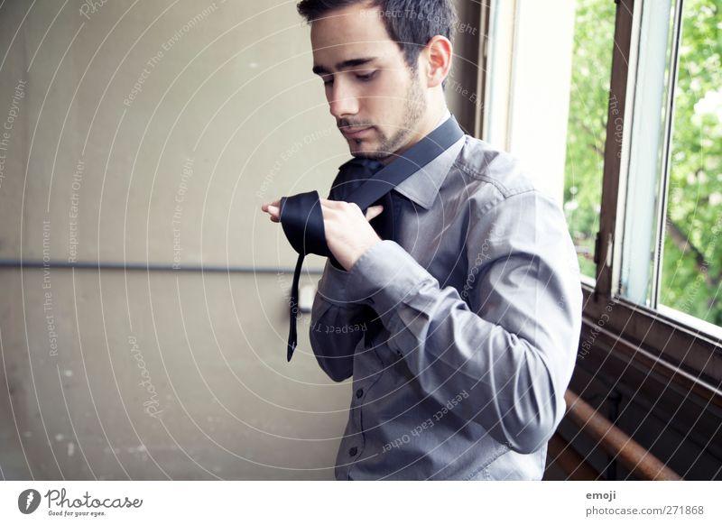 wer kann den Krawattenknoten? maskulin Junger Mann Jugendliche 1 Mensch 18-30 Jahre Erwachsene Mode Bekleidung Hemd Accessoire Bart schön Farbfoto Innenaufnahme