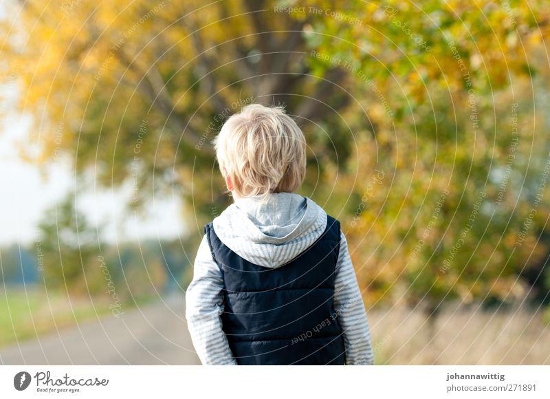 davor und danach. Mensch Kind Natur grün schön Baum Pflanze Einsamkeit Umwelt Herbst Gras Wege & Pfade orange gehen blond Kindheit