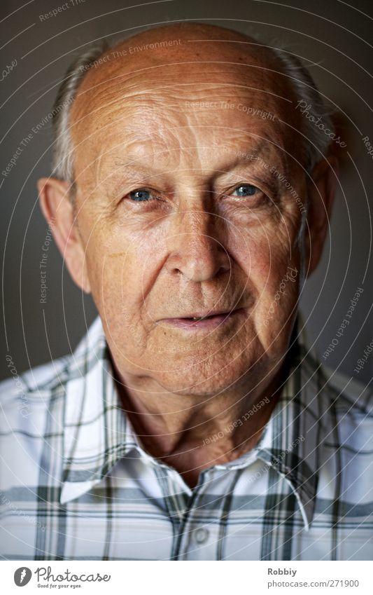 Großväterchen I Mann Erwachsene Männlicher Senior Großvater Kopf 1 Mensch 60 und älter Blick alt ästhetisch authentisch historisch braun grau Sympathie Weisheit