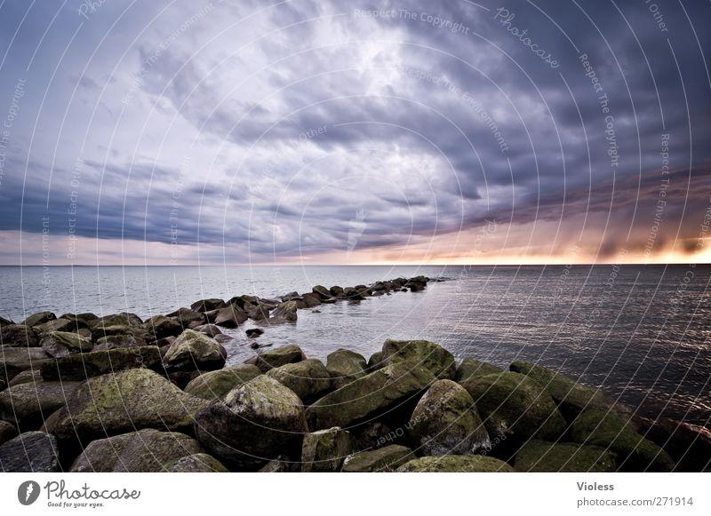 Hiddensee | find the way out....... Himmel Natur Meer Wolken Landschaft Frühling Küste Stimmung Regen Wetter Insel Urelemente bedrohlich Ostsee Gewitterwolken