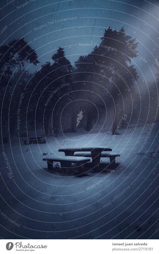 Schnee auf der Bank im Wald im Winter Baum Berge u. Gebirge Natur Landschaft Außenaufnahme Ferien & Urlaub & Reisen Platz Ausflugsziel Herbst fallen Hintergrund