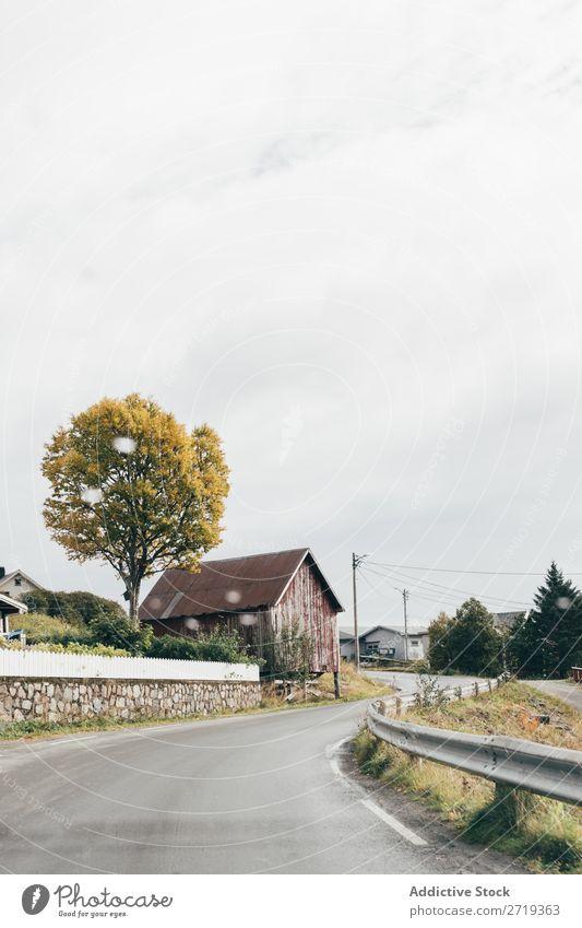 Schmale Straße im Dorf Wege & Pfade Ausflug Autobahn Natur schmal Landschaft Herbst Himmel Aussicht ruhig friedlich Wohnsiedlung Haus Idylle wunderbar