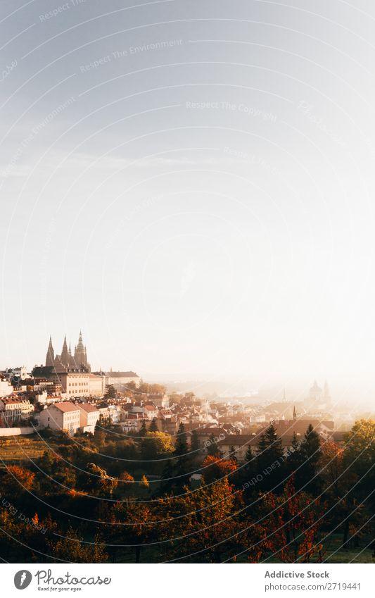 Morgendlicher Dunst über der Altstadt im Herbst Skyline Architektur Großstadt Ausflugsziel Landschaft Stadt Ferien & Urlaub & Reisen Verkehr Perspektive