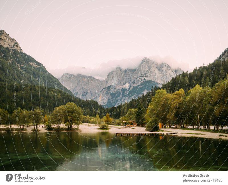 See mit Bäumen an Ufern und Bergen Berge u. Gebirge Landschaft nadelhaltig Idylle Reflexion & Spiegelung Immergrün ruhig Kiefer Wasser Baum natürlich Stausee