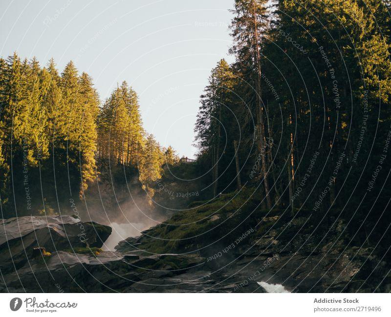Bach zwischen Felsen und Bäumen strömen Natur Wald Wasserfall Landschaft fließen natürlich Fluss grün Umwelt Berge u. Gebirge Kaskade Wut Außenaufnahme wild