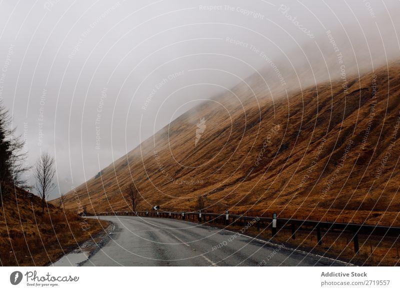 Straße in nebligen Bergen Berge u. Gebirge Wolken Asphalt Nebel Gras regenarm Natur Landschaft natürlich Ferien & Urlaub & Reisen Felsen Tourismus Stein