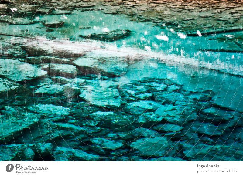 Wasserleuchten Umwelt Natur Landschaft Urelemente Erde Winter Wind See Seeufer China Juizhaigou Sichuan alt fantastisch blau türkis Umweltschutz kalt Klarheit