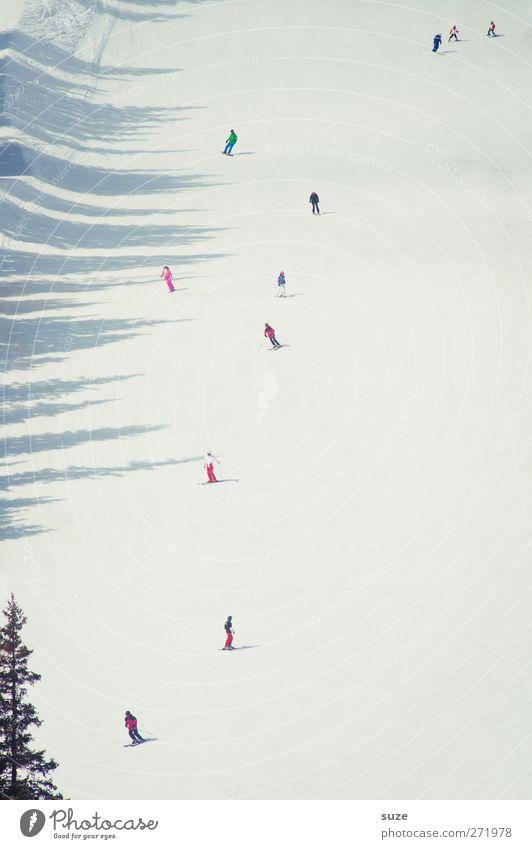 Schiii-fahn Mensch Natur Ferien & Urlaub & Reisen weiß Winter Landschaft Umwelt Berge u. Gebirge kalt Schnee klein Klima authentisch Tourismus Schönes Wetter Urelemente