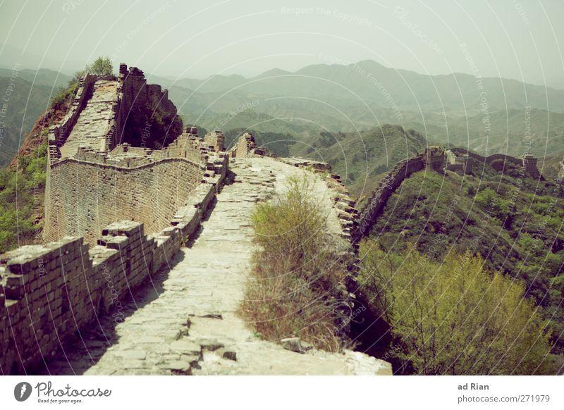 The Great Wall Landschaft Wolkenloser Himmel Frühling Schönes Wetter Pflanze Baum Gras Sträucher Wald Hügel Felsen China Menschenleer Ruine Turm Hochsitz