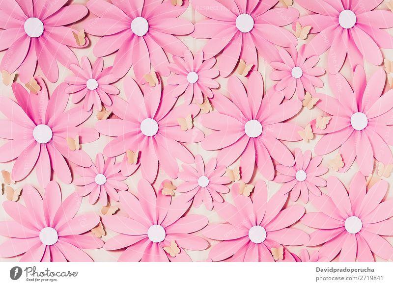 Blumen Hintergrund Fotowand abstrakt Gänseblümchen Blütenblatt selbstgemacht Dekor Papier Tapete Hintergrundbild Handwerke Strukturen & Formen Ornament