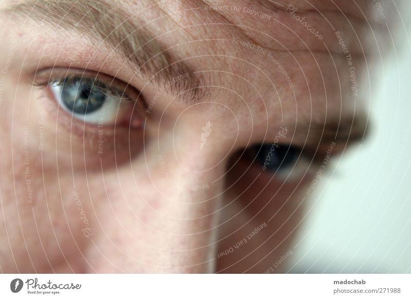 Portrait junger Mann Blickkontakt Mensch maskulin Erwachsene Kopf Gesicht Auge beobachten Vertrauen Neugier Farbfoto Innenaufnahme Schwache Tiefenschärfe