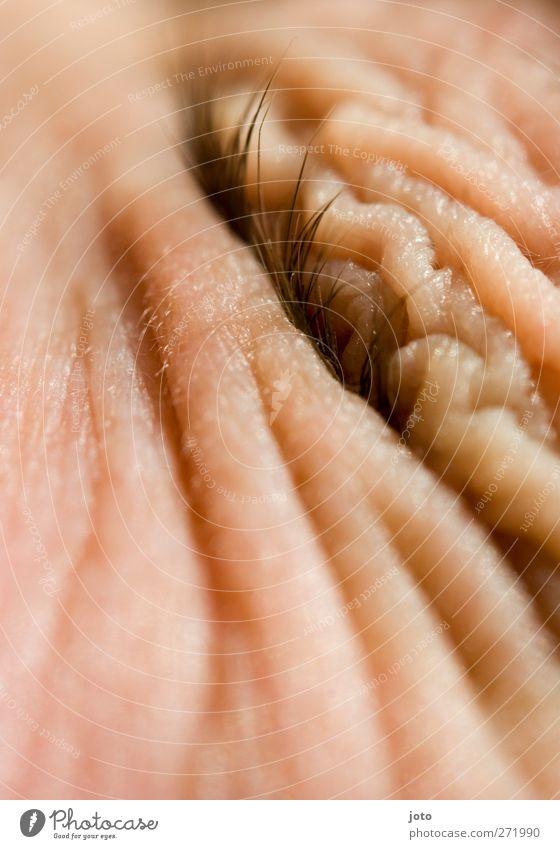 in wellen eingetaucht alt Auge nackt Traurigkeit Kraft Haut Energie schlafen Hautfalten Schutz Todesangst Sonnenschirm Körperpflege Verzweiflung anstrengen Wimpern