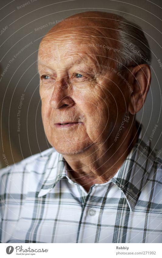 Großväterchen II Mensch Mann alt Erwachsene Senior grau Kopf braun maskulin authentisch Fröhlichkeit Lächeln 60 und älter Lebensfreude Männlicher Senior Großvater