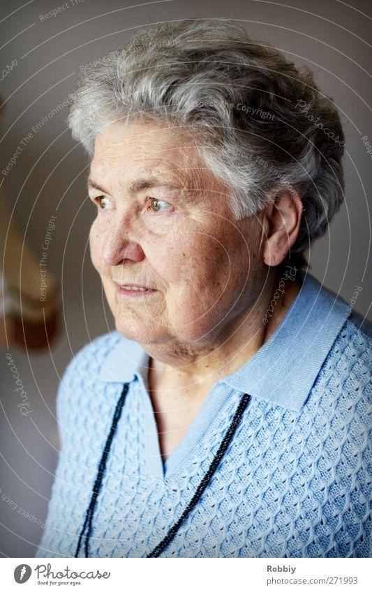 Großmütterchen II feminin Frau Erwachsene Weiblicher Senior Großmutter 1 Mensch 60 und älter Blick alt authentisch blau grau seriös Farbfoto Innenaufnahme Tag