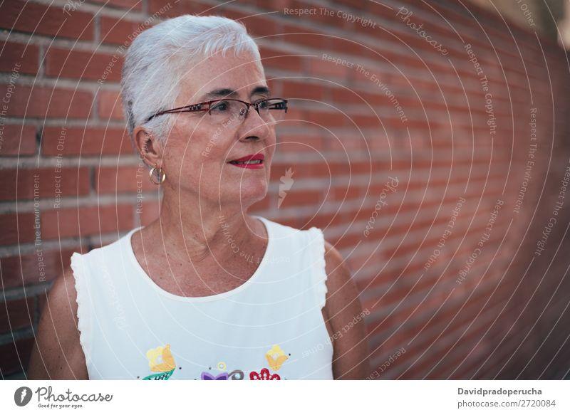 Ältere Frau schaut weg graue Haare alt Porträt Beautyfotografie in den Ruhestand getreten Mensch Senior Erholung niedlich attraktiv horizontal hübsch