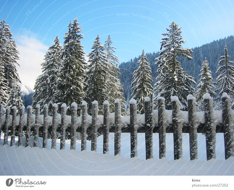 Winterzauber Zaun Tanne Baum Schweiz kalt Schneelandschaft Berge u. Gebirge Himmel