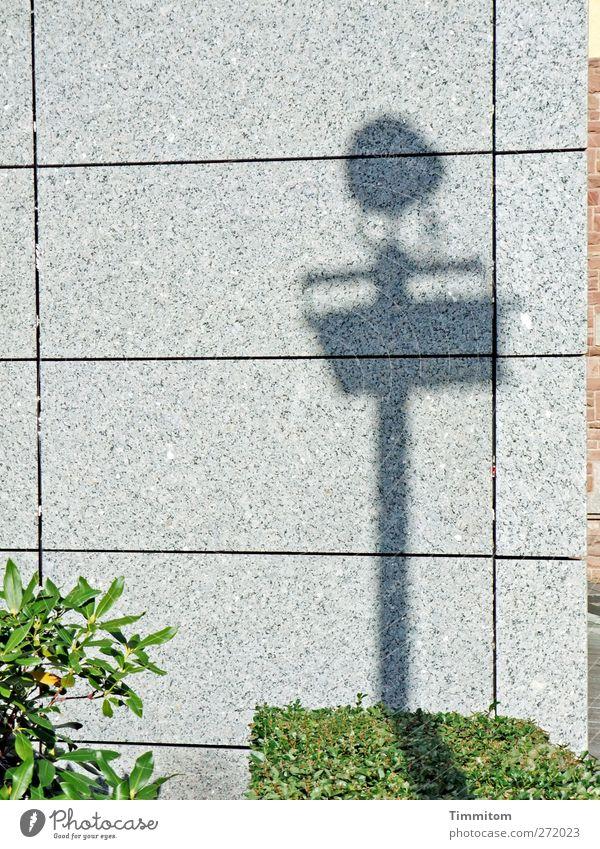 Uffbasse! grün Stadt grau Stein Stimmung Fassade warten Ordnung stehen Hinweisschild Sträucher einfach Zeichen Fuge Grünpflanze Warnschild