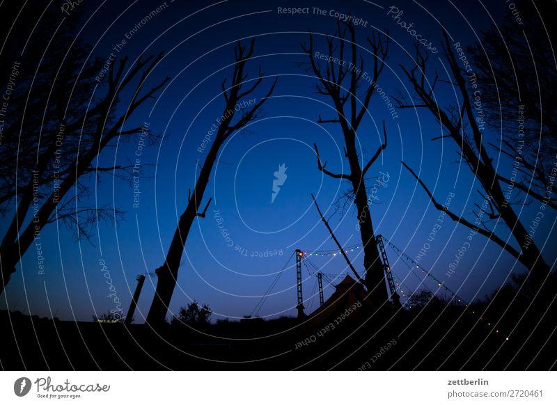 Zirkus am Abend Nacht Show Zirkuszelt mehrfarbig Dekoration & Verzierung Dämmerung Licht Lichterkette Menschenleer Textfreiraum Baum Baumstamm Ast Zweig Himmel