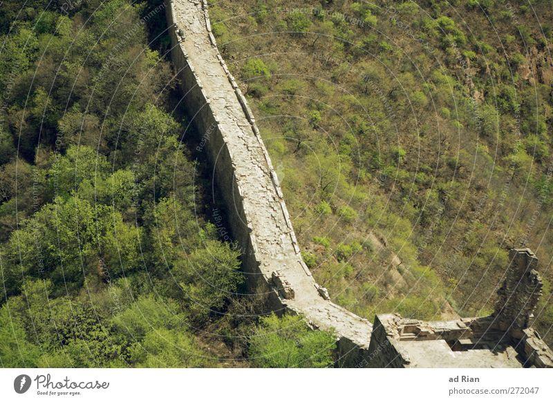 Grosse Mauer (kleiner Ausschnitt) Natur Landschaft Frühling Schönes Wetter Baum Gras Sträucher Wald Hügel China Ruine Tor Bauwerk Architektur Wand Treppe