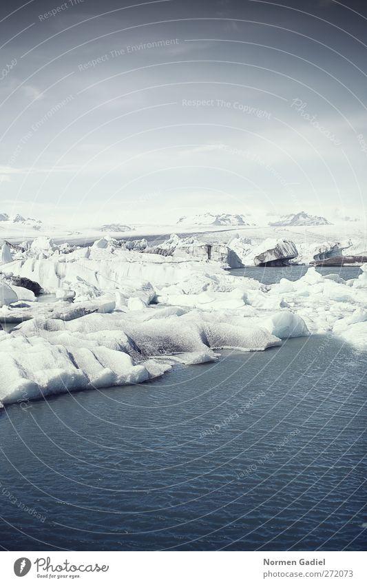Erderwärmung Umwelt Landschaft Wasser Winter Klima Klimawandel Eis Frost Schnee Küste Bucht Abenteuer einzigartig entdecken Idylle Ferien & Urlaub & Reisen