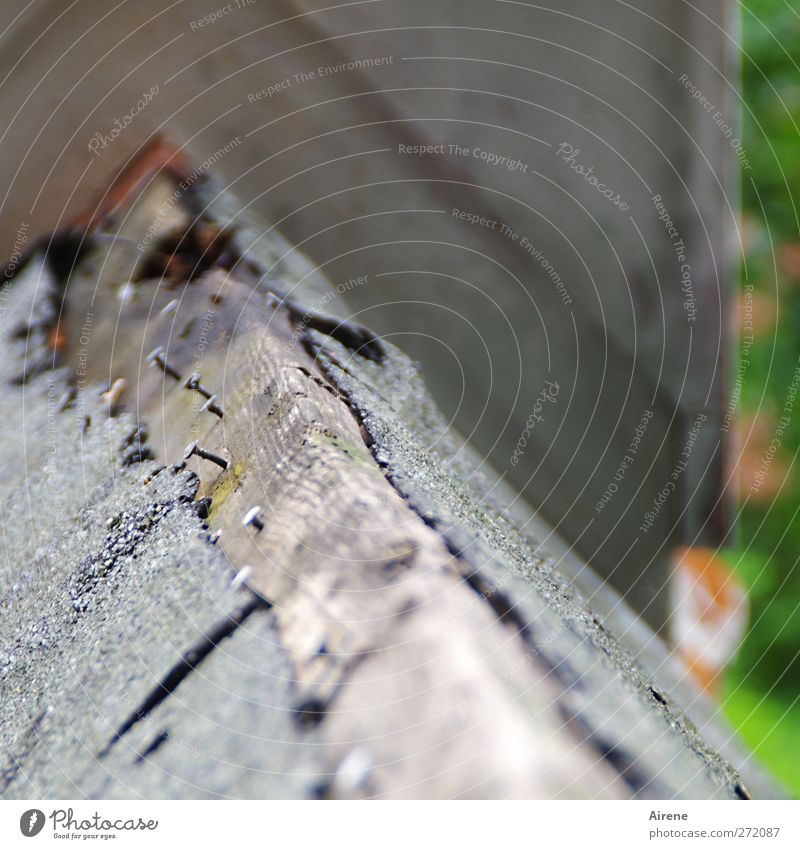 Für Blümchen36 aufs Dach gestiegen Menschenleer Haus Bauwerk Gebäude Architektur Dachfirst First Satteldach Holz alt hoch kaputt Spitze grau Dekadenz Zerstörung