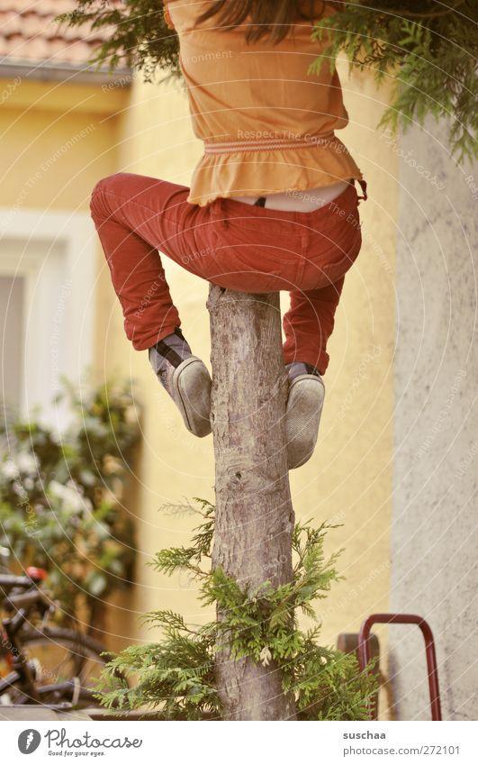 baumkletterin feminin Kind Kindheit Rücken Gesäß Beine Fuß 3-8 Jahre Baum Gebäude Fassade Klettern beweglich Hof Farbfoto Außenaufnahme Schwache Tiefenschärfe