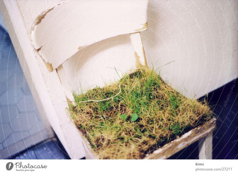 grasstuhl - hfg offenbach Gras Garten Stil Stuhl Rasen obskur abstrakt