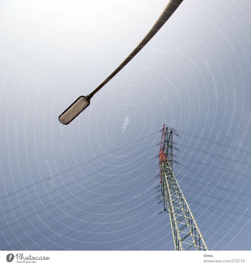 Großwild Technik & Technologie Energiewirtschaft Elektrizität Hochspannungsleitung Stromtransport Straßenbeleuchtung Umwelt Himmel Schönes Wetter Turm Metall
