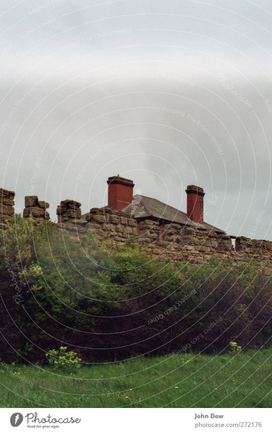 Englische Wohnkultur (Relaunched) Wohnung Haus Garten Gras Sträucher Mauer Wand Fassade Dach Schornstein kalt Nordengland England Häusliches Leben Hecke