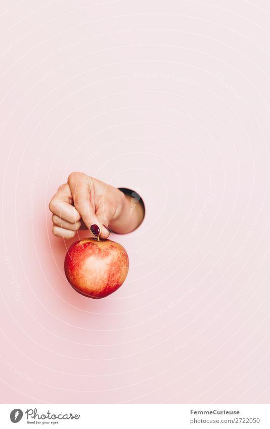 Hand of a woman holding an apple Frau Mensch Gesunde Ernährung Gesundheit Lebensmittel Erwachsene feminin rosa Frucht Finger festhalten Apfel