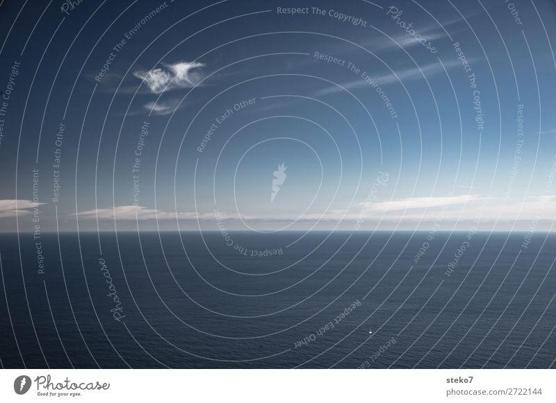 Winziges Segelboot blau weiß Meer Einsamkeit Ferne klein Freiheit Horizont Abenteuer Schönes Wetter entdecken Unendlichkeit Mut
